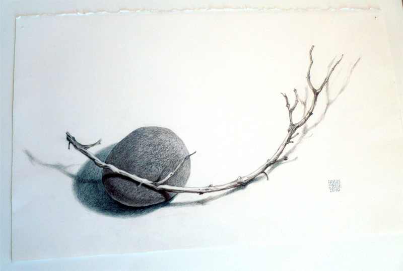 Rock and Twig by Phyllis Steele 17 x 10 Pencil on paper