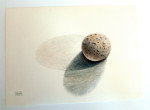 Rock With Double Shadow by Phyllis Steele 10 x 7 Pencil on paper