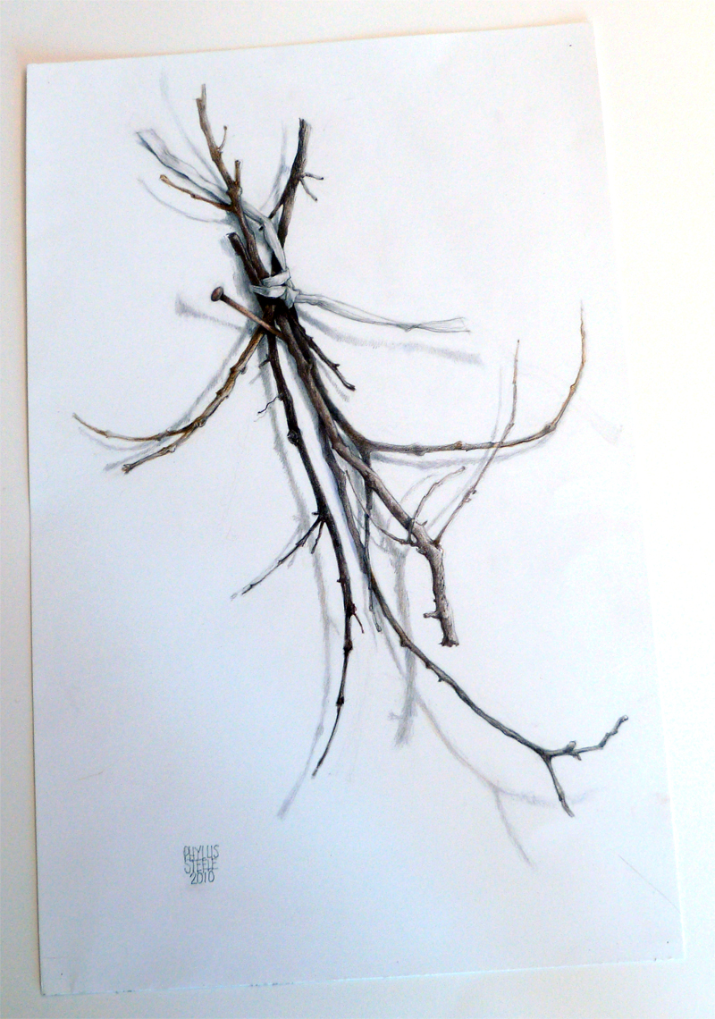 Winter - Four Seasons Series by Phyllis Steele 11 x 17 Pencil on paper